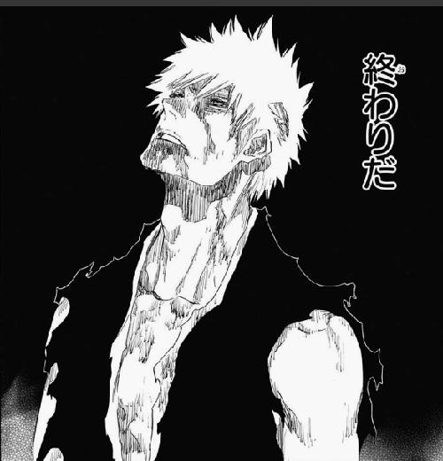 f:id:iwatako:20170114214535j:plain